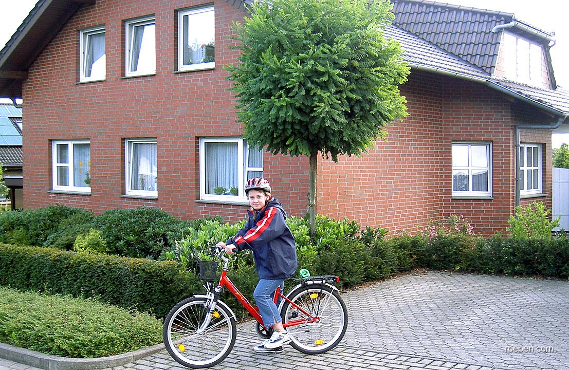 Клинкерный облицовочный кирпич Roben Westerwald bunt NF, 240x115x71